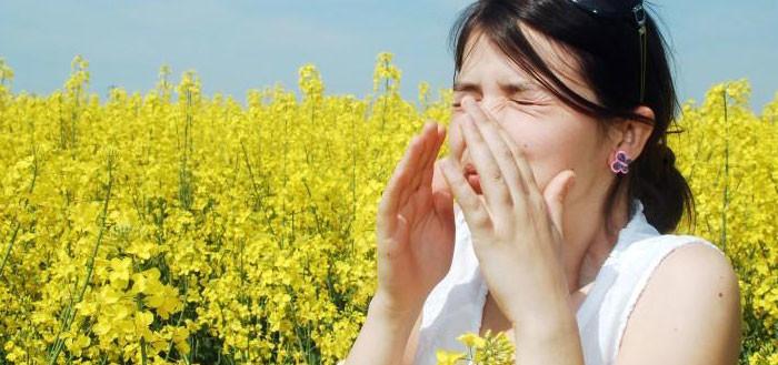 combattere le allergie con aerosol a pistone